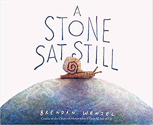 A Stone Sat Still book cover image