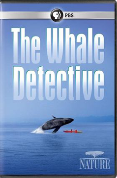 The Whale Detective