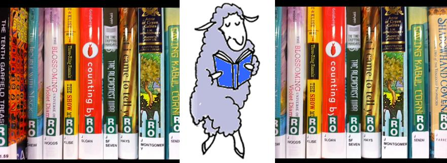 Sheep Reading Books